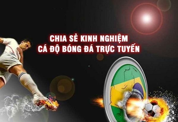keo-nha-cai-o-dau-chuan-nhat-2